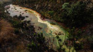 Foto: Greenpeace Colombia